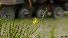 DW Eco Africa - Natur in Militärübungsgebiet