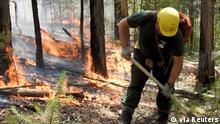 Ein Waldarbeiter hilft den Waldbrand in der Region Krasnoyarsk zu löschen
