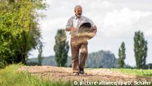 Deutschland Landwirtschaft Feldblumen