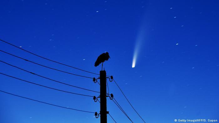 BdTD | Weißrussland Minsk | Ein Storch steht auf einem Strommast während im Hintergrund der Comet Neowise zu sehen ist (Getty Imags/AFP/S. Gapon)