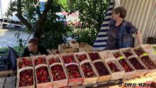 Polen Warschau Obstmarkt Markt Erdbeermarkt