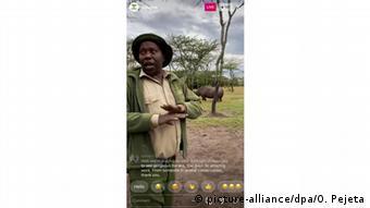 Safaris on livestream