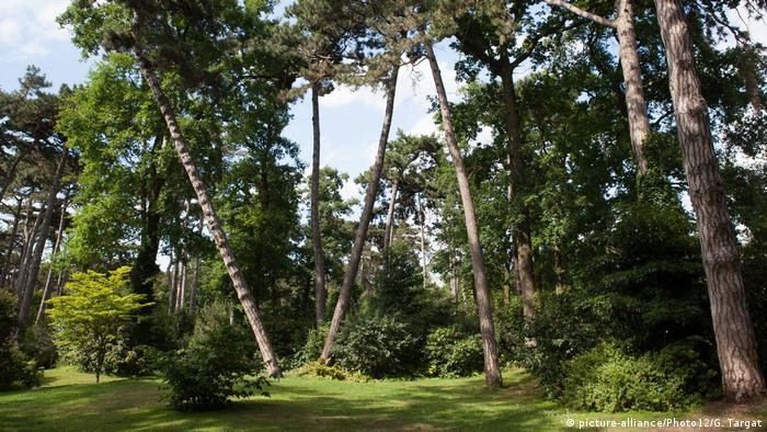 Frankreich   Bois De Vincennes   Pariser Blumenpark