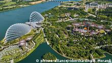 Garden By the Bay, botanic garden, Marina Bay, Singapore, Southeast Asia, Asia | Verwendung weltweit, Keine Weitergabe an Wiederverkäufer.