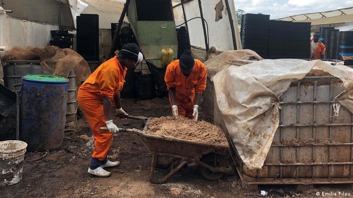 Los trabajadores de InsectIpro cargan granos usados para preparar el sustrato para alimentar sus larvas de mosca soldado negra.