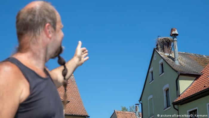 Гнездо аистов на трубе пивоварни в Ильфельде
