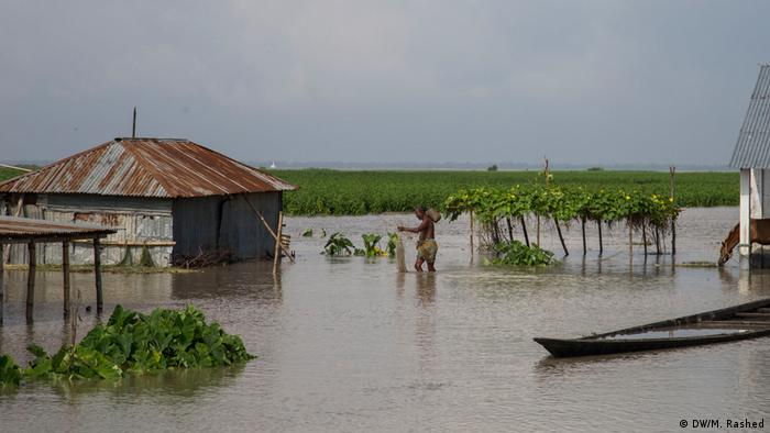 Village clusters in Sariakandi, northern Bangladesh, flooded by heavy rain