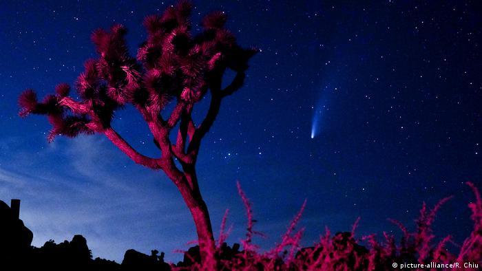 Комета NeoWise в небе над Лос-Анджелесом (США)