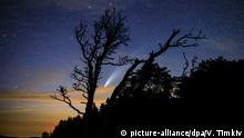 16.07.2020, Russland: 6289610 16.07.2020 The Comet Neowise is seen in the night sky above the Lago-Naki plateau, Krasnodar region, Russia. Vitaly Timkiv / Sputnik Foto: Vitaly Timkiv/Sputnik/dpa |