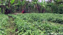 Kamerun: Gericht Bamoun, Njapshe DW, Henri Fotso Ort : Douala/Cameroun Datum : Juli 2020 Suchbegriffe: Bamoun/ Njapshe/ couscous/serie cuisine/ Légumes