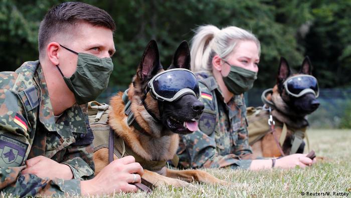 Deutschland Coronavirus Spürhunde der Bundeswehr
