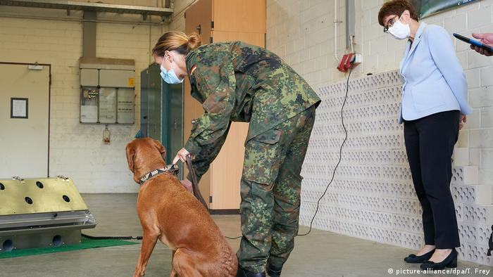 Bundeswehr sniffer dog being trained (picture-alliance/dpa/T. Frey)