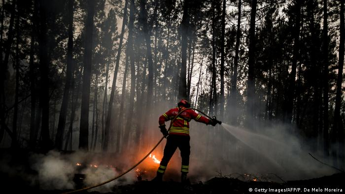 Firefighter in Portugal sprays water on flames in a forest