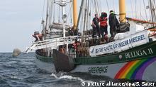 Deutschland Greenpeace versenkt Granitblöcke vor Rügen