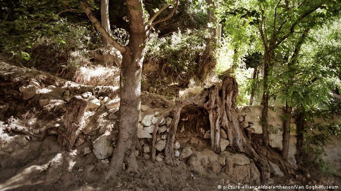 Colina com raízes de árvores expostas no vilarejo francês Auvers-sur-Oise