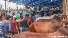 Bangladesh | Qurbani-Viehmarkt in Gabtoli, Dhaka