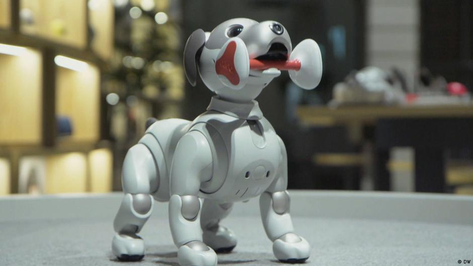 """Aibo"" - The Next Generation Pet"