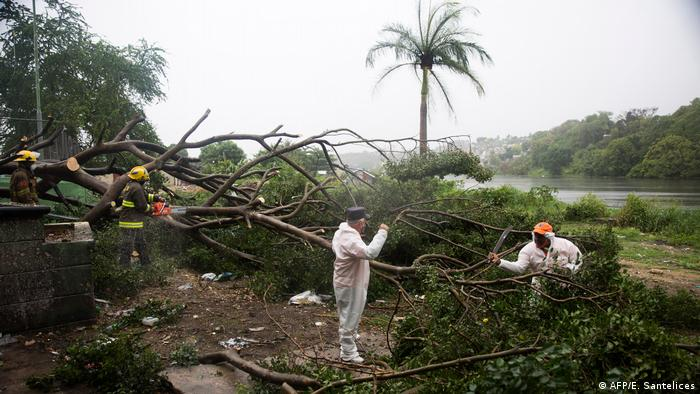 Emergency workers clear fallen trees in the Dominican Republic