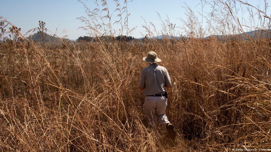 Zimbabwe compensates white farmers with billions