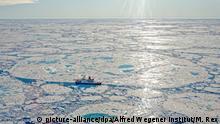 Polarstern in Arktis | Scholle der MOSAiC-Expedition