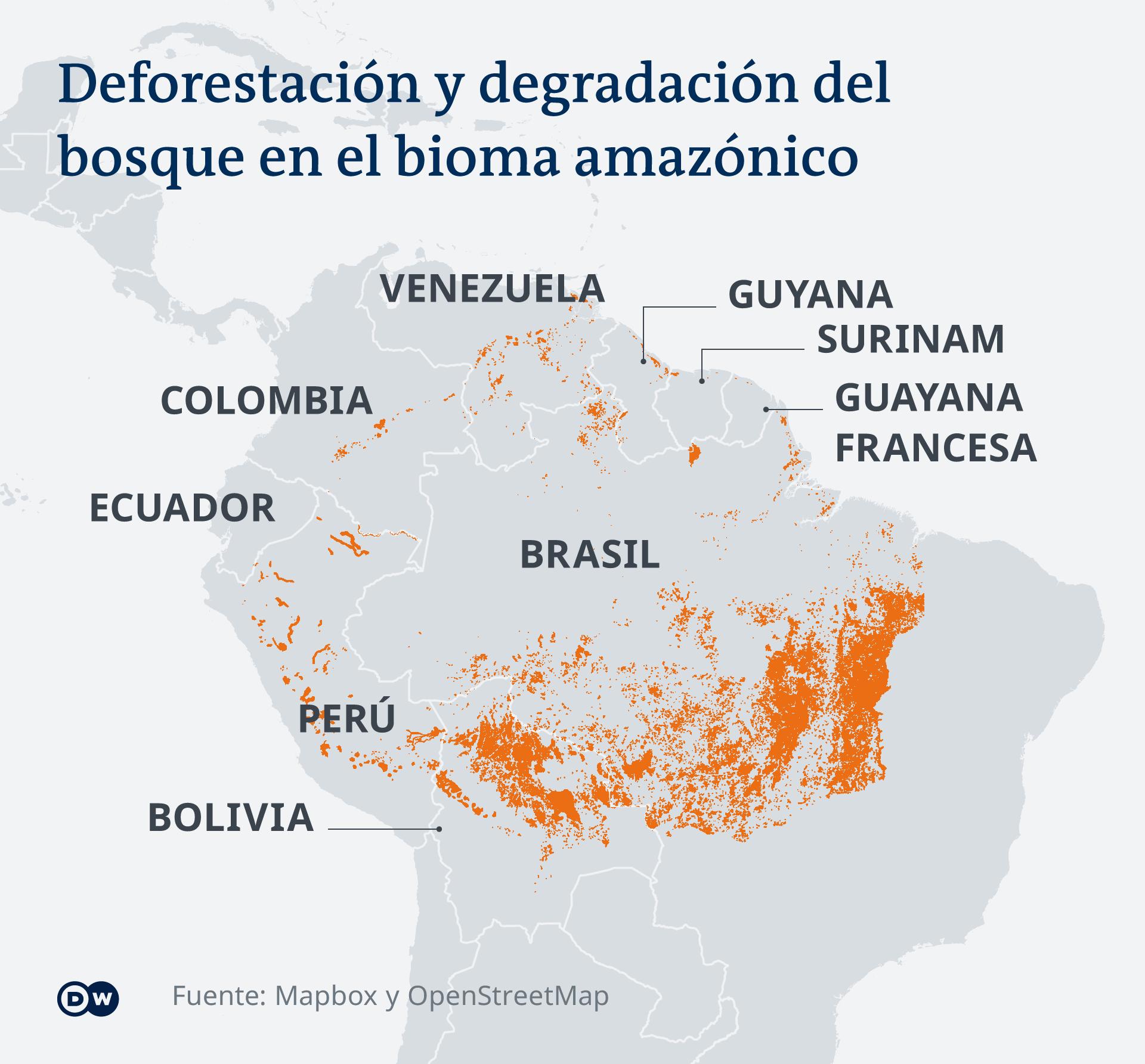 Infografik Karte Waldschwund in Lateinamerika ES