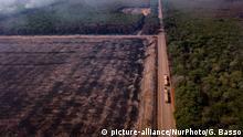 Brasilien Highway BR-163