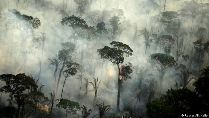 Brasilien Waldbrände (Reuters/B. Kelly)