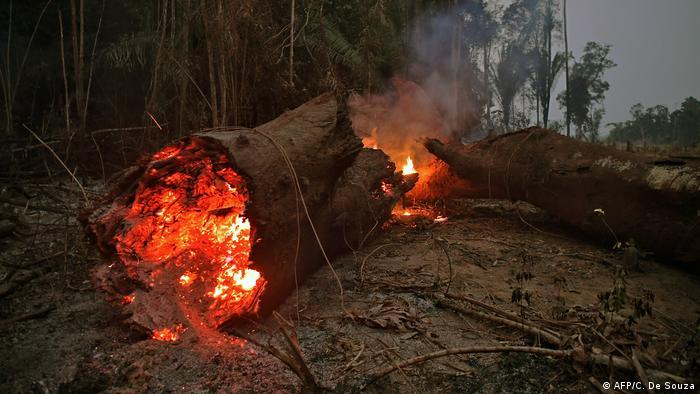 Feuer bei Abuna im Bundesstaat Rondônia im Amazonasbecken