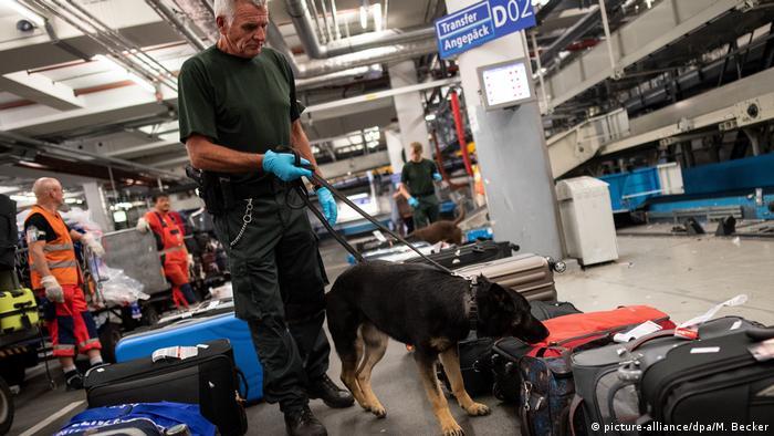 Kontrollerde köpekler de kullanılıyor