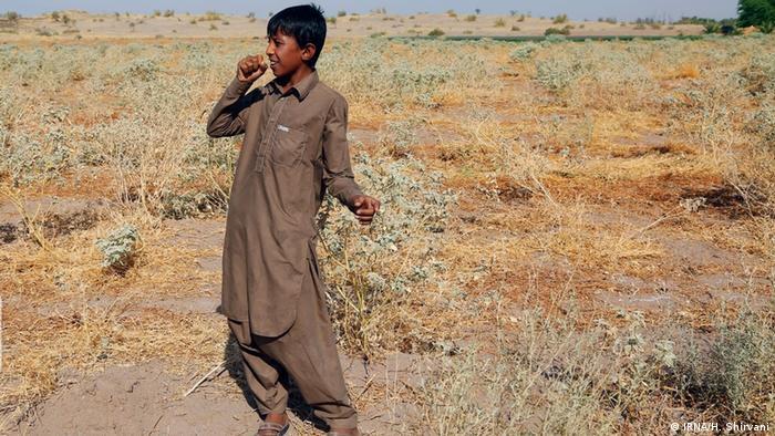 امیرمحمد ۱۲ ساله اهل بخش جازموریان در جنوب استان کرمان آرزو دارد روزی خواننده شود و در تلویزیون ترانه بخواند و خواننده معروفی بشود.