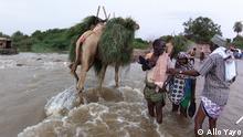 Äthiopien | schwere Überschwemmung in Afar