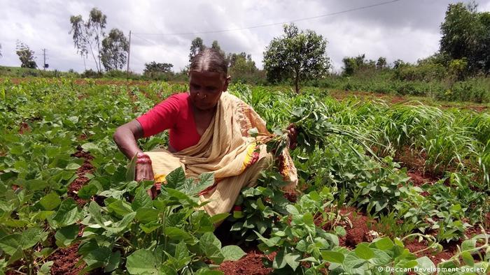 Global Ideas | Eco Swaraj