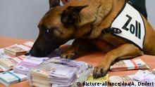 Deutschland Hauptzollamt Frankfurt - Schnüffelhund Aki