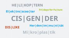 Infografik Wortwolke DE