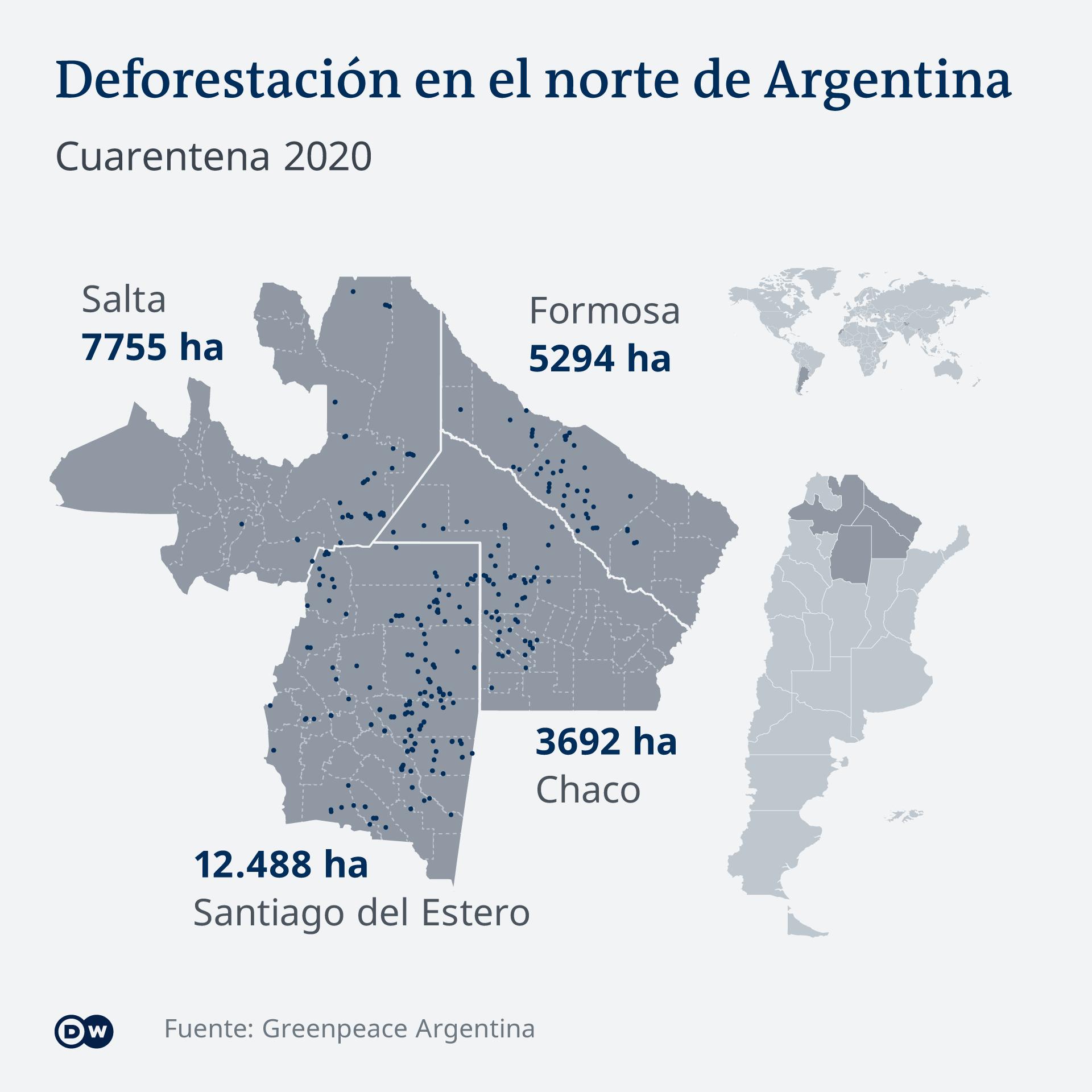 Concentración de la deforestación en el norte del país. Según la organización ecologista se han destruido 38.852 hectáreas de bosques nativos.