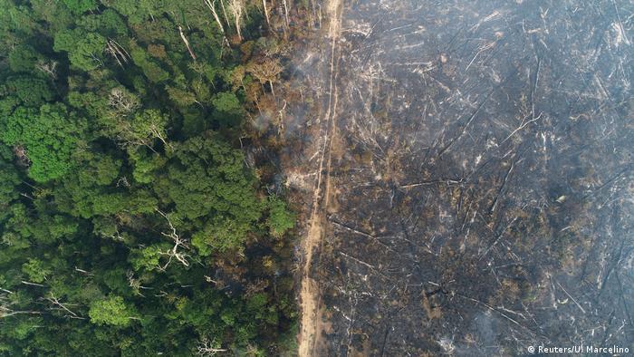 Área desmatada e queimada na Amazônia, em agosto de 2020