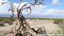 Kalifornien Death Valley National Park