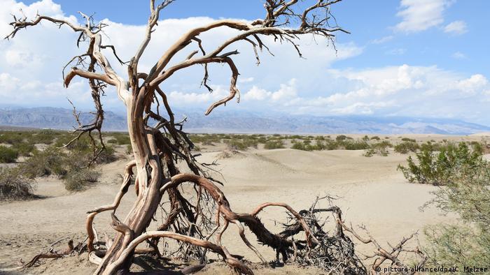 Blick in das Death Valley im US-Bundesstaat Kalifornien (Foto: picture-alliance/dpa/C. Melzer)
