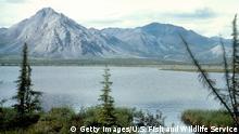 Ein Panorama aus Alaska mit einer Bergkette im Hintergrund und einem großen See im Vordergrund und Zentrum des Bildes