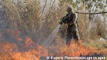 Firefighters try to put out forest fires near the city of Cuiaba, in the state of Mato Grosso, Brazil, 14 August 2020. The Brazilian Amazon, which is home to the largest tropical forest in the world, is on its way to close 2020 with a record of devastated area, after the so-called deforestation alerts have grown by 33% in the year-on-year period that ended last July. The Brazilian Pantanal, a biodiversity sanctuary located in the southern Amazon, faces similar threats. Forest fires hit the Brazilian state of Mato Grosso ACHTUNG: NUR REDAKTIONELLE NUTZUNG PUBLICATIONxINxGERxSUIxAUTxONLY Copyright: xROGERIOxFLORENTINOx AME8313 20200814-637330405656709046