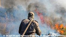 Brasilien Waldbrände im Pantanal