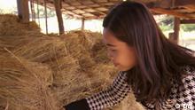 Eco India Sendung #96 Video-Still Rice straw