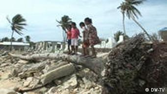 Kinder stehen auf umgestürzter Palme (Quelle: DW)