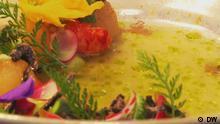 DW Sendung Euromaxx Schwäbisch Asiatische Küche