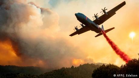 BdTD USA Kalifornien Waldbrände (AFP/J. Edelson)