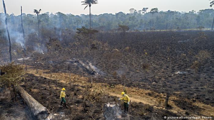 Brasilien Waldbrand im Amazonasgebiet