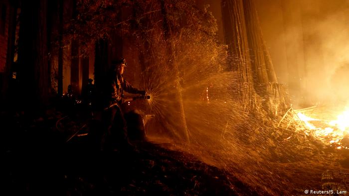 A fire fighter sprays burning trees with a hose