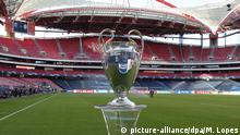 Champions League Bayern München - Paris Saint-Germain Pokal (picture-alliance/dpa/M. Lopes)