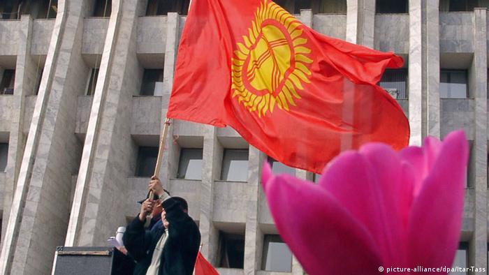 در پی انتخابات پارلمانی در قرقیزستان در فوریه سال ۲۰۰۵ اعتراضات گسترده مردمی به جریان افتاد که در نهایت به سرنگونی عسکر آقایف، رئیس جمهوری این کشور انجامید. در آن زمان مخالفان و معترضان از گل لاله کوهی به عنوان سمبل استفاده میکردند. قرقیزستان اگر چه در سال ۲۰۱۰ سرانجام به یک جمهوری پارلمانی تبدیل شده است، اما نهادهای حقوق بشری هنوز از محدودیتهای آزادی عقیده و بیان در این کشور ناخشنود هستند.