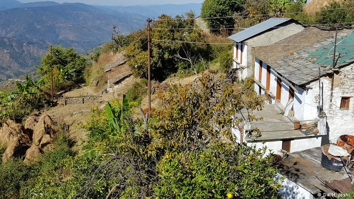 Indien Wälder in Uttarakhand